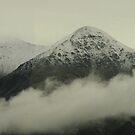South Island - NZ by Louise Linossi Telfer