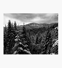 Snow In The Cascades ~ Oregon High Casacades ~ Photographic Print