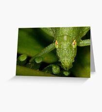 Nature's Eyes Greeting Card