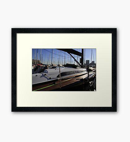 Marten 49 Framed Print