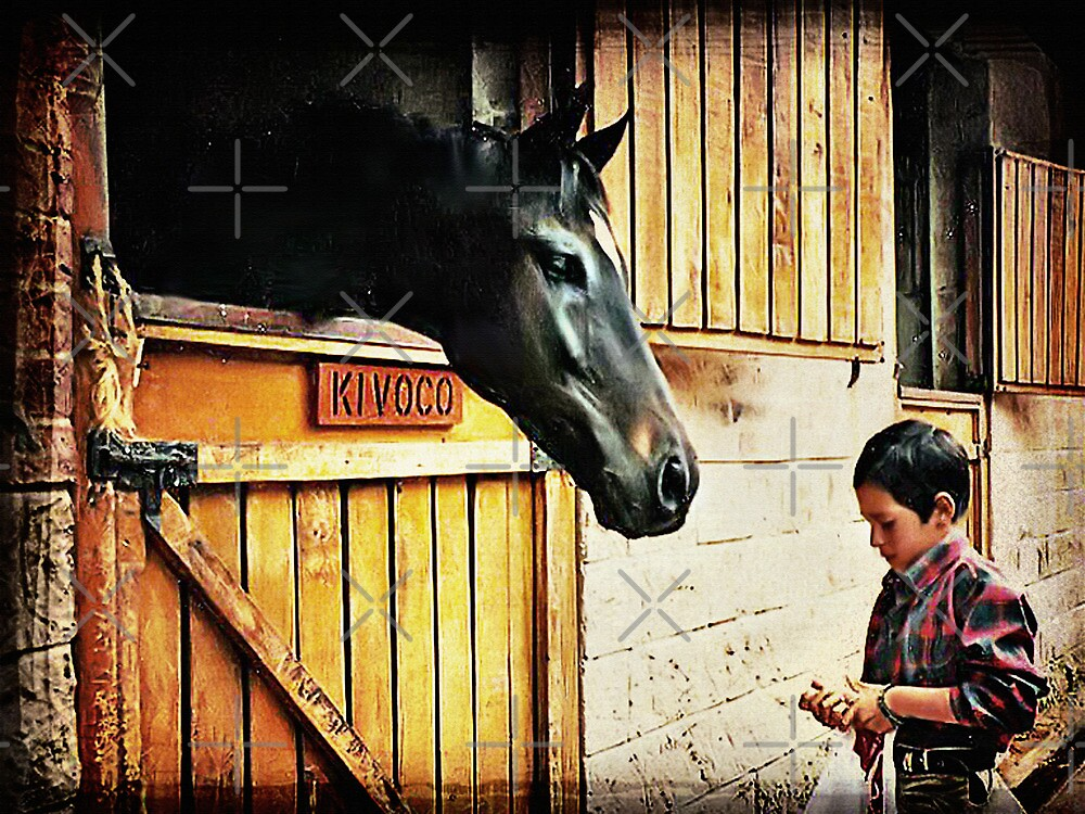 Feeding The Horse by Maria  Gonzalez