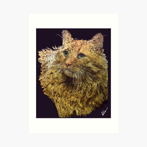 Casimir the adorable Cat Art Print