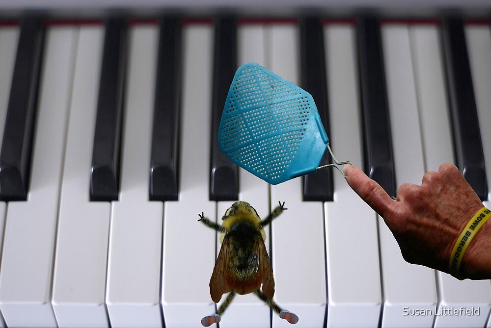 Bee flat by Susan Littlefield