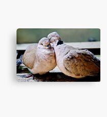 Sweet Love Birds Canvas Print