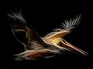 Medicine Wheel Totem Animals by Liane Pinel- Pelican by Liane Pinel