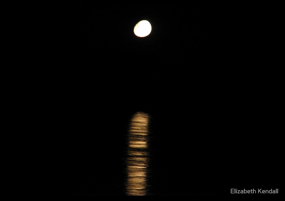 Moonriver by Elizabeth Kendall
