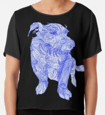 That must be a Chinese dragon dog;) Chiffon Top