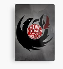 How To Train Your Dragon Metal Print