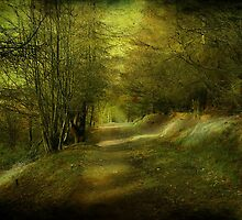The Coppice. by Irene  Burdell