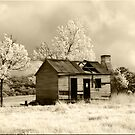 Old Hut in Sepia by Kym Howard