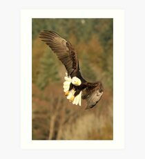 With the Presence of a Full Moon, The Eagle Soared Art Print