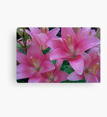 beautiful lilies Canvas Print