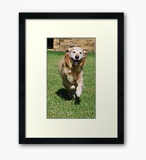 Winners are Grinners Framed Print