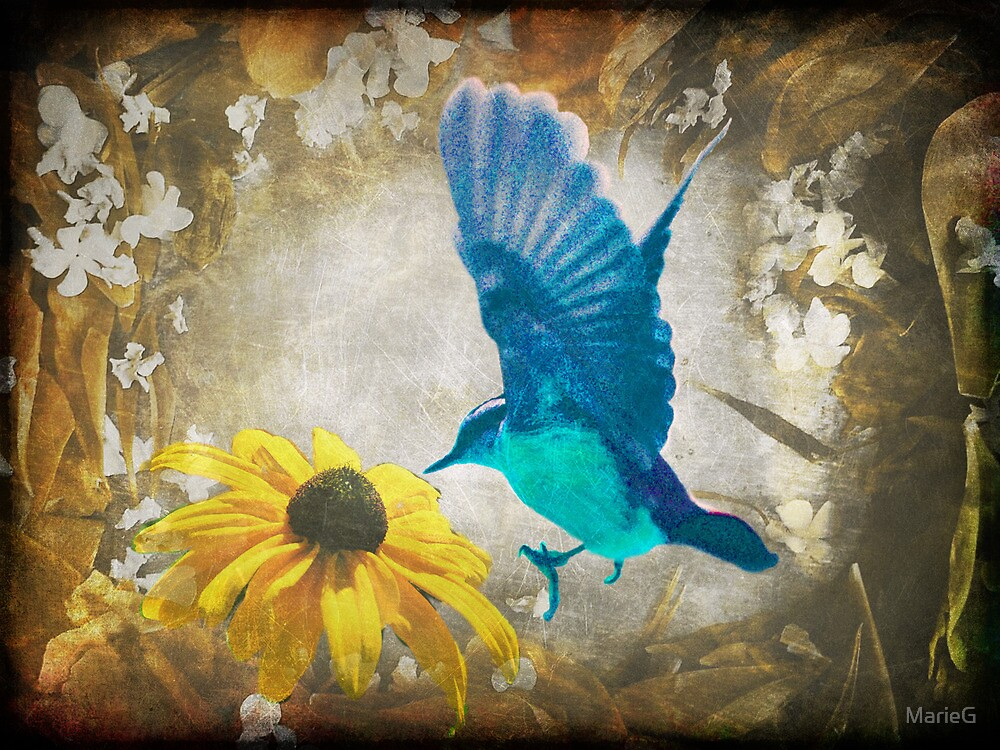 Bluebird by MarieG
