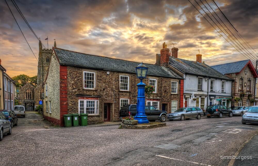 Village Life by timmburgess