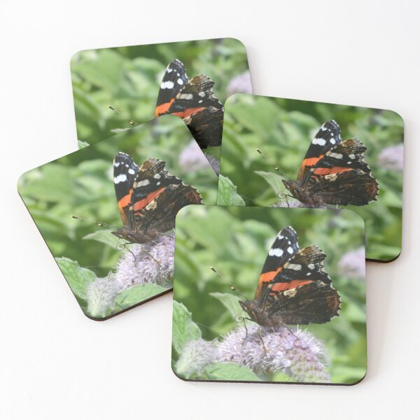Red Admiral Butterfly Coasters (Set of 4)