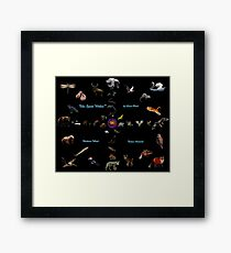 The Spirit Within-Medicine Wheel Complete by Liane Pinel Framed Print