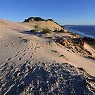 Carlo Sandblow at sunrise. Rainbow Beach, Queensland, Australia. (2) by Ralph de Zilva