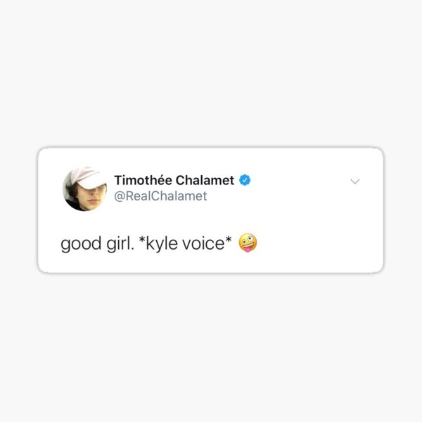 timothee chalamet bonne fille tweet Sticker
