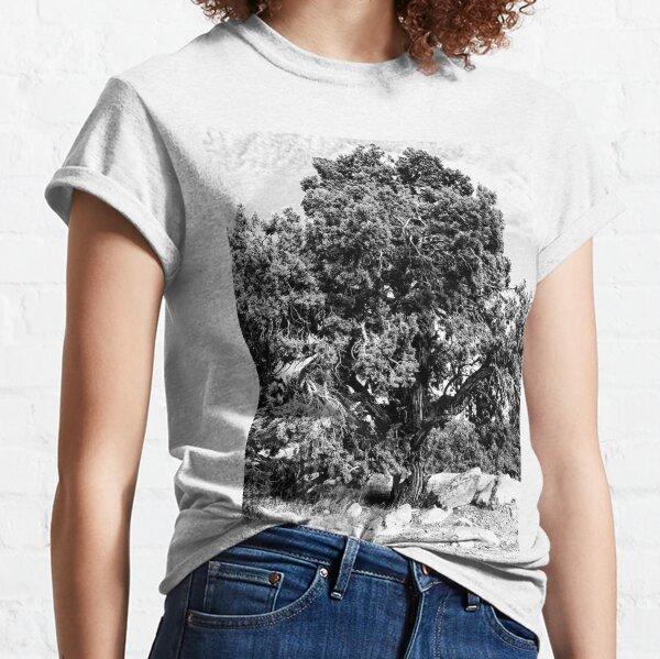 Ancient Juniper BW Classic T-Shirt