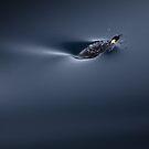 Breath by Doug Thost