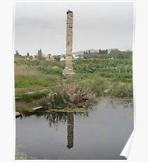 Turkey - Artemis Poster