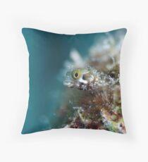 Bonaire Blenny Throw Pillow