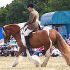 Chestnut Vanner with Rider by LoneAngel