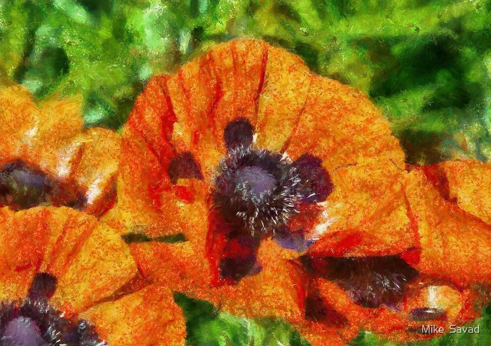 Flower - Poppy - Orange Poppies  by Michael Savad