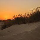 Sunset at dunes by Hiroshi  Maeshiro