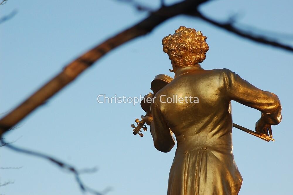 Strauss II by Christopher Colletta