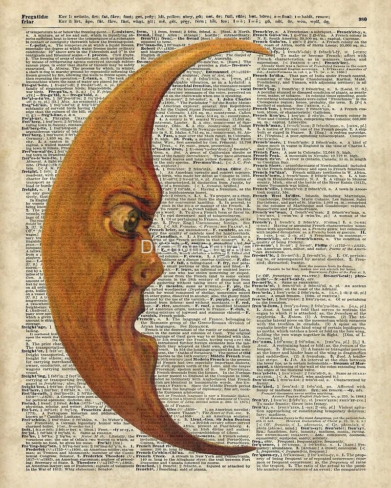 Vintage Half Moon Face Dictionary Art by DictionaryArt