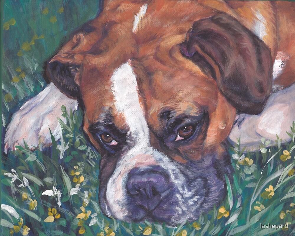 Boxer Fine Art Painting by lashepard