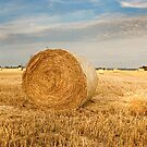 Norfolk Hay Bale by Nick Jermy