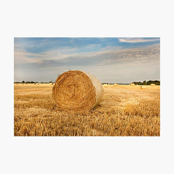 Norfolk Hay Bale Photographic Print
