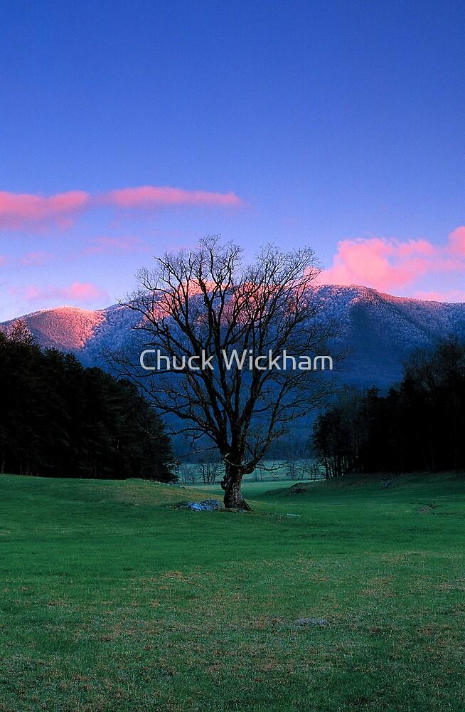 WINTER SUNSET,CADES COVE* by Chuck Wickham