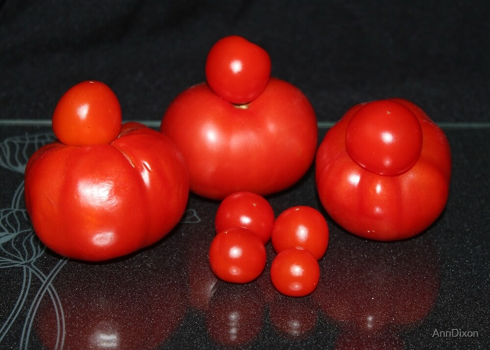 Tomato Crop by AnnDixon
