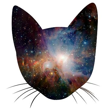 Galaxy cat by ulrikkc