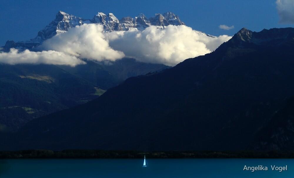 The Peak by Angelika  Vogel