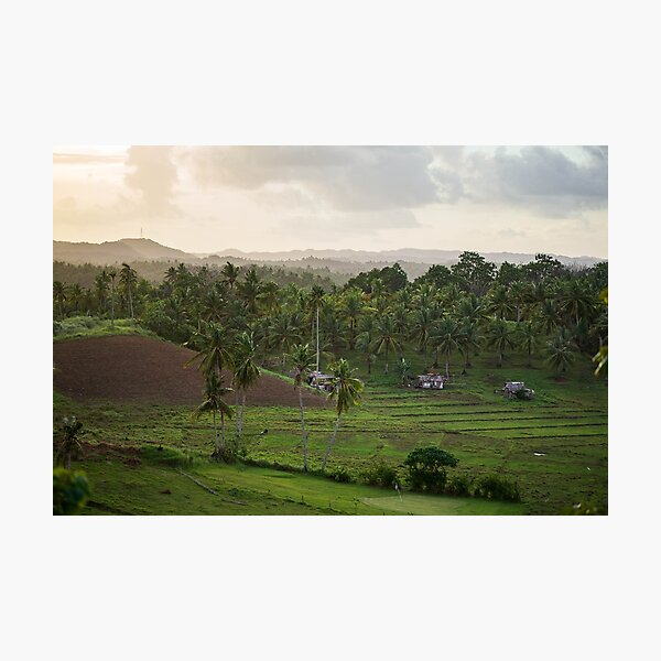 Sunset over tropical fields Photographic Print