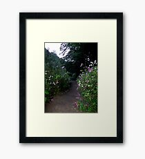 A Walk In The Valley Framed Print