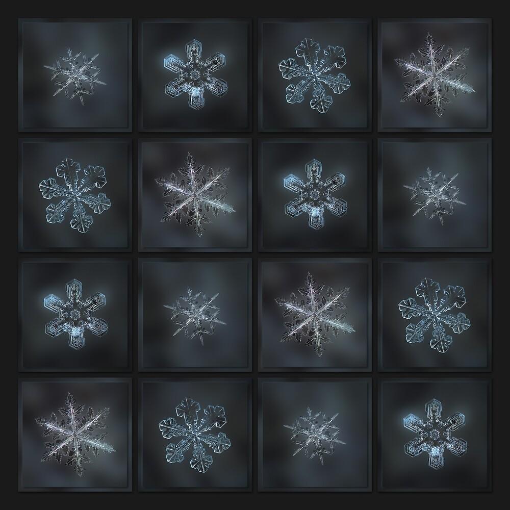 Under the grey sky - real snowflake collage, x2 version by Alexey Kljatov