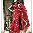 saree shoot 2 by ranjay
