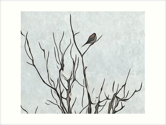 Bird in a Bush by Annie Adkins