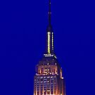 Empire State at night by michael6076