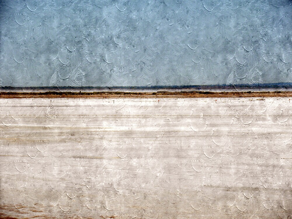 Great Salt Plains by Annie Adkins