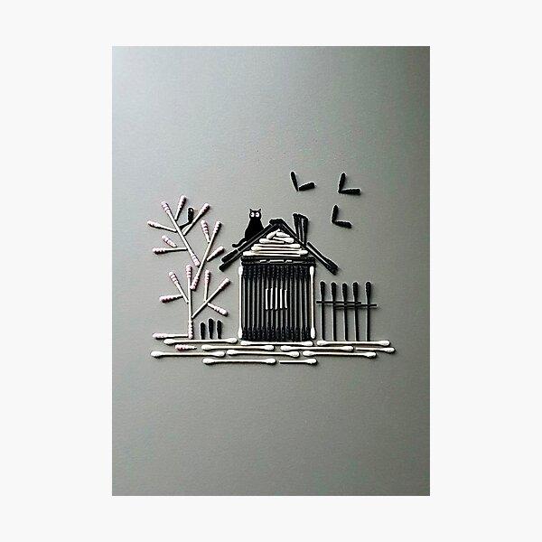 Cotton Bamboo Photographic Print