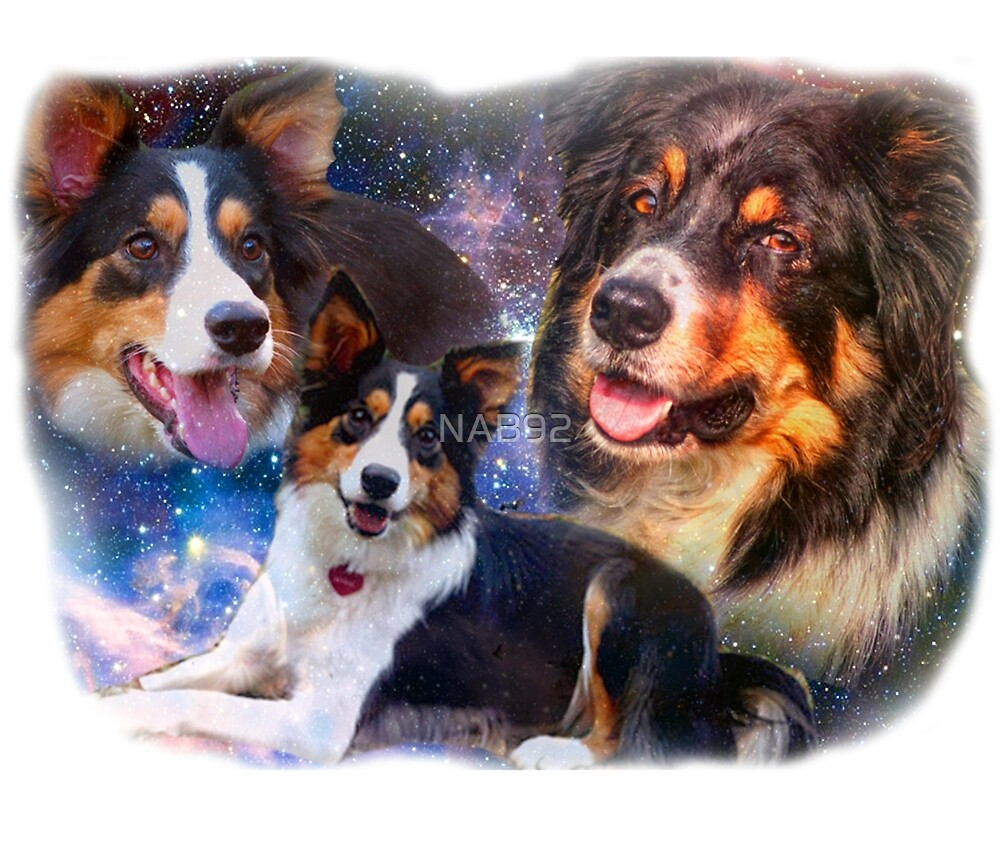 Space Border Collies rule the Universe by NAB92