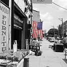 Philly Stars and Stripes by maryevebramante