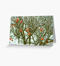 Winter Apples Greeting Card